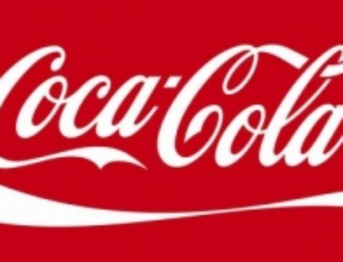 Bebida and Coca Cola.